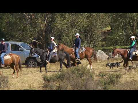 Go Horse Riding in the Snowy Mountains  - Tour the World TV