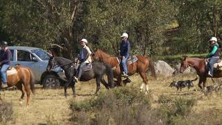 Camping and horse riding adventure with Mountain Ash Trails and Tour the World TV