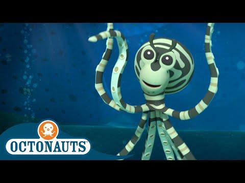 Octonauts - The Mimic Octopus   Cartoons for Kids   Underwater Sea Education  