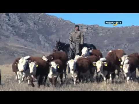"""Route to the future"" #8 (22.07.16) - Kazakh TV - ru"
