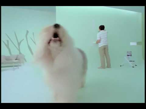 Dulux Paint Tv Advert