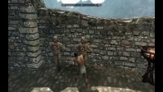 Skyrim: Прикол 7
