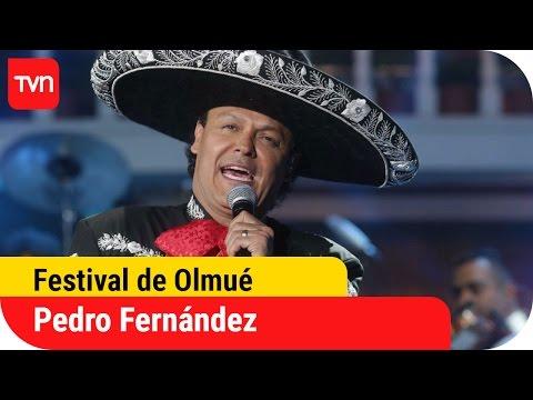 Pedro Fernández encantó a todo El Patagual | Festival del Huaso de Olmué