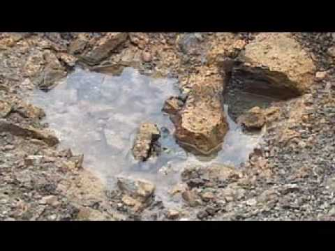 Sakhalin-2 Project_Erosion Control and Reinstatement techniques.wmv