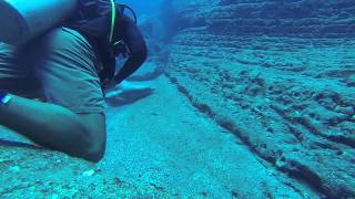 Niihau Dive  Friday 20th June 2014