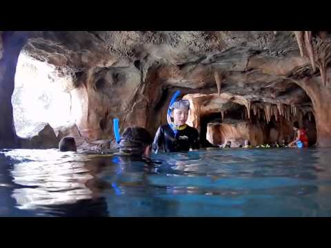 Inside Tips on Visiting Discovery Cove - Orlando, FL