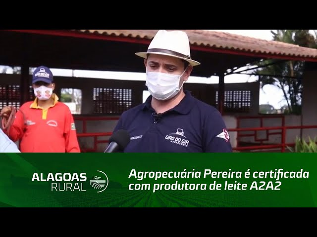 Agropecuária Pereira é certificada com produtora de leite A2A2
