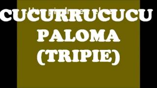 POPURRI MUSICA REGIONAL MEXICANA KARAOKE