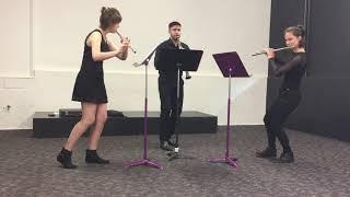 Michael Walshe: Trio Pastorale | Trio Vienti