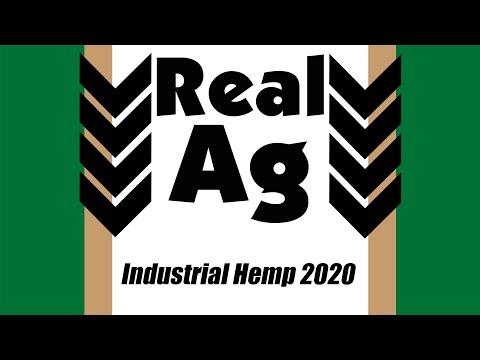 Real Ag (904) – Industrial Hemp (2020)