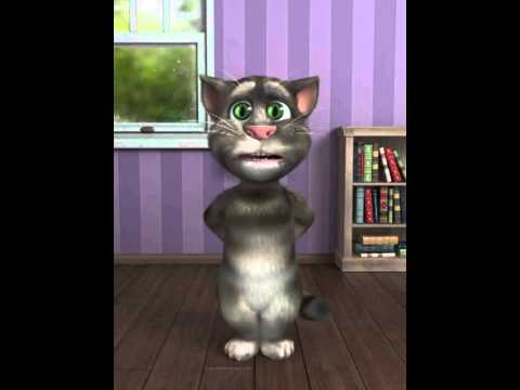 Dil Dil Pakistan Song by Talking tom