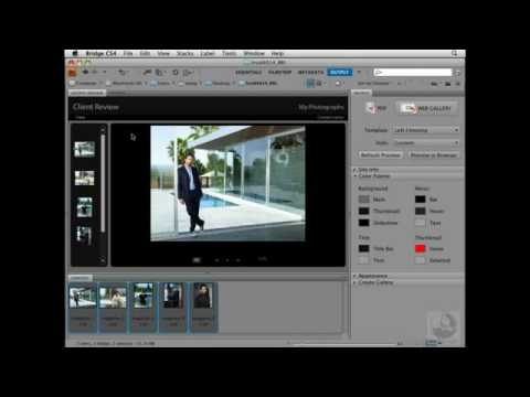 how to use adobe bridge cs6 tutorial