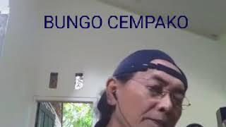 #RIAU Lagu BUNGO CEMPAKO...Cover. Maaf bila ada salah ucap kata...