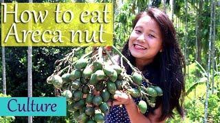 How to eat Areca nut