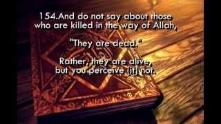 Download SURAH AL BAQARAH HOLY QURAN RECITATION 2