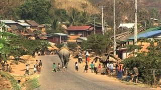 Laos by bike   3/3