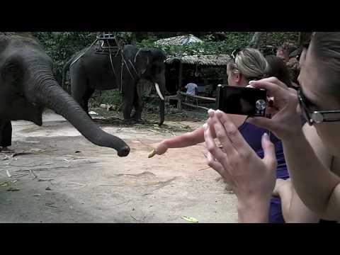 Thailand 2010 Travel Video