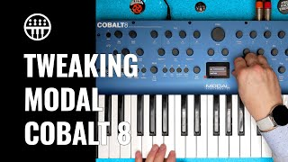 Tweaking the Modal Cobalt 8 | Review, Sounds & Jam | Thomann