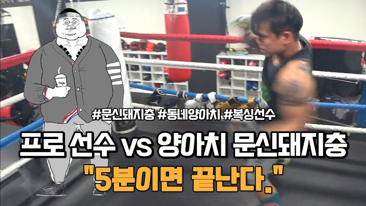 프로 선수가 생각하는 동네 양아치 문신돼지충ㅣ복싱바이러스2 [김덕배 이야기]