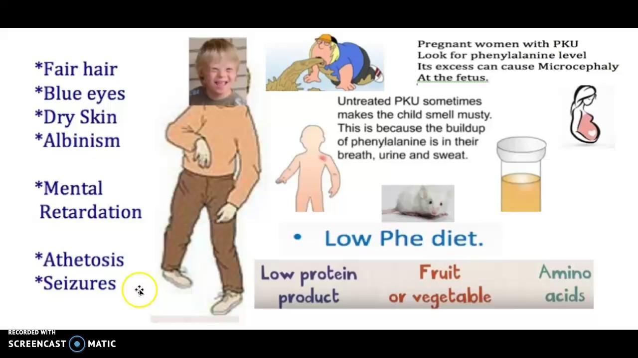 Phenylketonuria - what it is Symptoms, diagnosis and treatment. How is phenylketonuria inherited 92