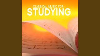 Violin Concerto No. 3 in G, K 216: II. Adagio