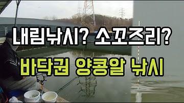 재미있는 내림소꼬 낚시~