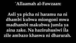 138- Mpiga Picha Kalaaniwa - ´Allaamah al-Fawzaan