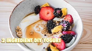 How To Make Your Own Yogurt With 2 Ingredients