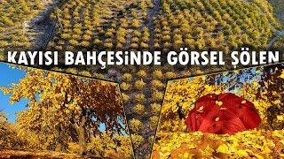 """Elazığ'da """"Altın Yapraklar""""In Görsel Şöleni"""