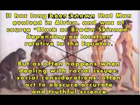 Homohabilis, Homo-erectus, Homo-sapien-sapien