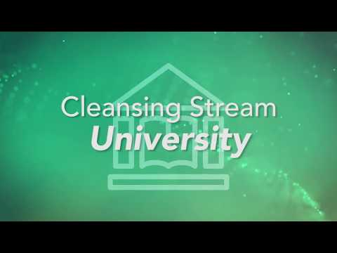 Cleansing Stream University - Module 1 — Cleansing Stream