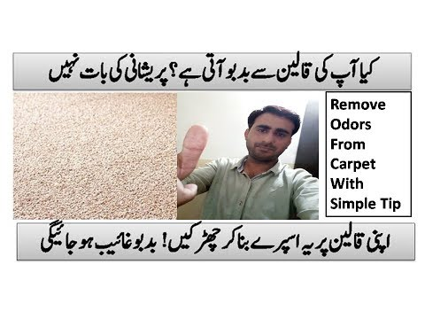 Ahmed Lifehacks   How To Remove Smell From Carpets   How To Clean Smelly Carpet