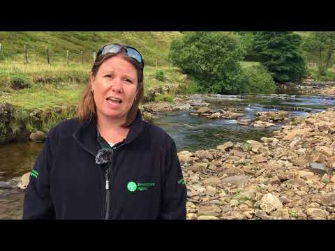 Introduction to NFM in Weardale