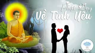 Người Thất Tình Nên Nghe Video Này - Phật Dạy Về Tình Yêu - Rất Hay