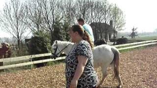 Kevin paardrijden hilarisch