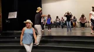 Waverly-Shell Rock Middle School dances to 'Git Up' Video