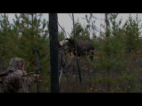 World Record Moose hunting