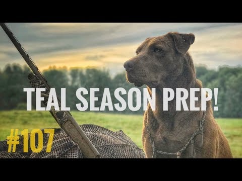 Teal Season! - How To Hunt Early Teal The Right Way!