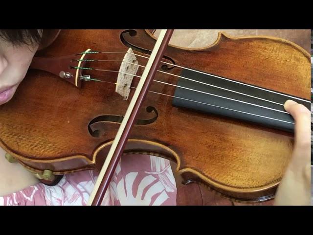 Ifstrings Master Build #345 Guarneri del Gesu 1742