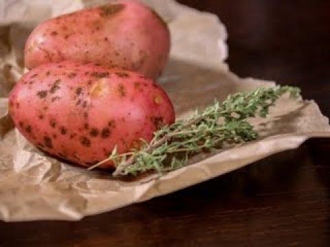 Беларусь – картофельное