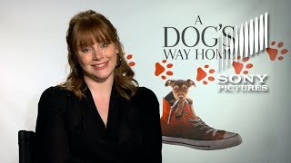 Join A DOG'S WAY HOME for Pet Adoptions!