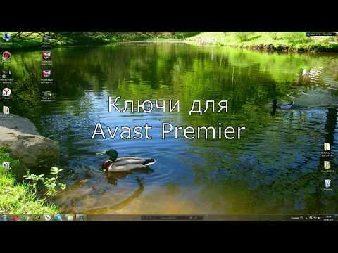 Вечный ключ Avast Premier