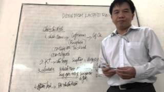 Dung dịch Lactate Ringer