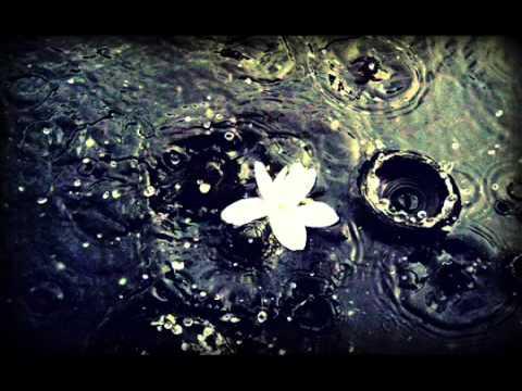 Steve Vang - Raining Tears (New R&B FL Studio Instrumental Beat 2012)