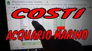 SPESE ACQUARIO MARINO Quanto CONSUMA un Acquario Marino e quali sono i costi e le spese?