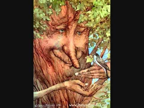 Wood Folk Written by Robert Chaney. VocalsMusic: Patrick Smith. Illustrations: James Browne.