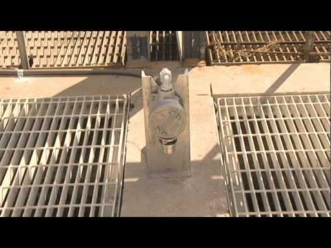 Wastewater Treatment Plant Tour -