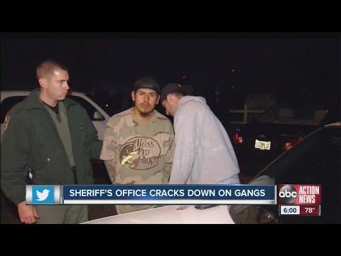 Hillsborough County Sheriff's Office cracks down on gangs