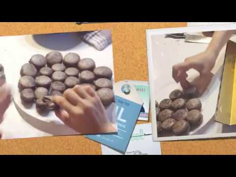How to Make Basic Chocolate Macaron Cookies (French Meringues)