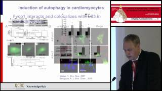N Frey   Role of protein degragation pathways in the pathogenesis of cardiomyopathy